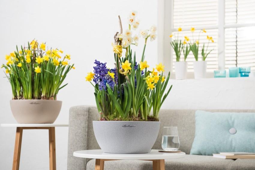 Dekoracje Kwiatowe Na Wielkanoc Ogrodolandiapl