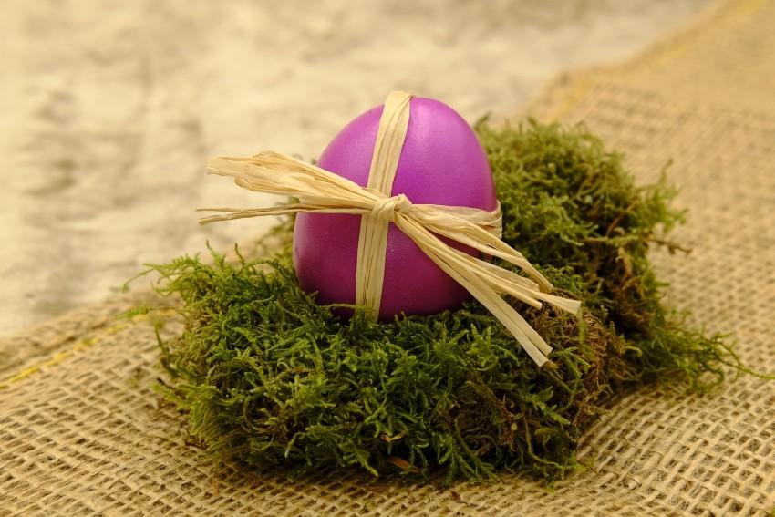 jajko wielkanocne na poduszce z mchu