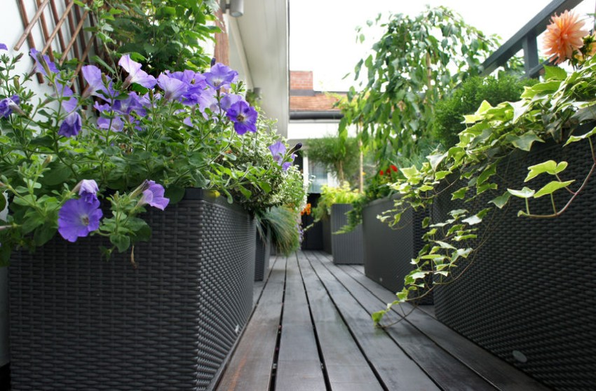 technorattanowe donice na balkonie