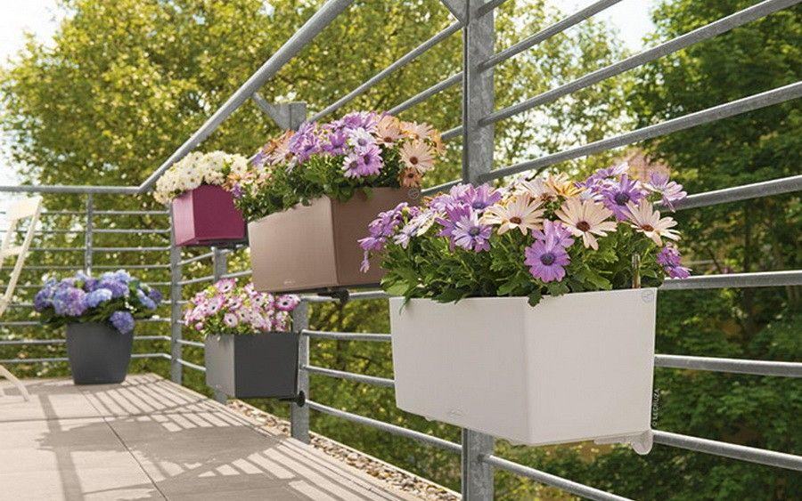 donica lechuza balconera color 80. Black Bedroom Furniture Sets. Home Design Ideas